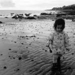 At Whiting Bay, Isle of Arran